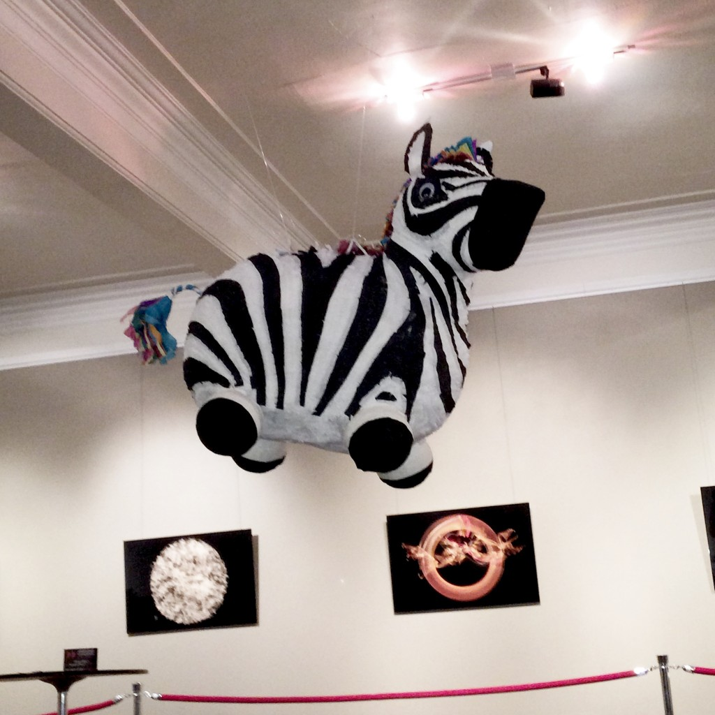 The Pinata Project - Zebra Pinata