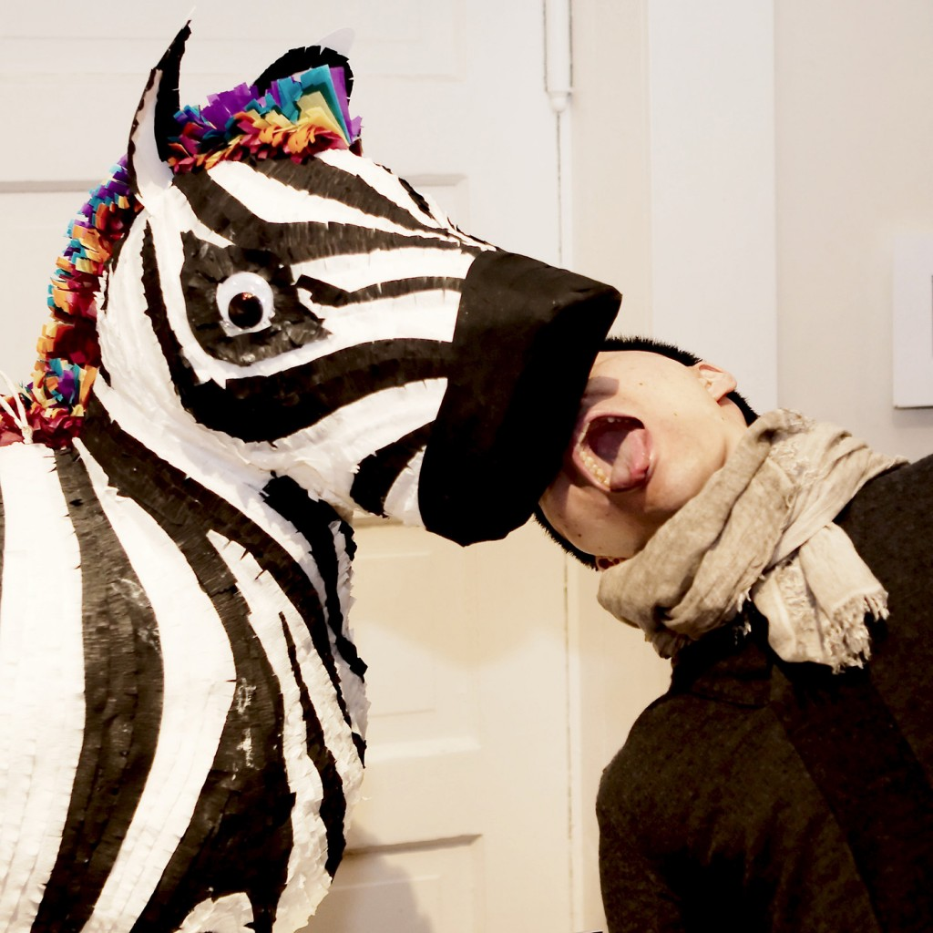 The Pinata Project - Derek and Zebra